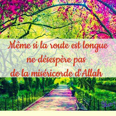 Hadith Et Innovations14